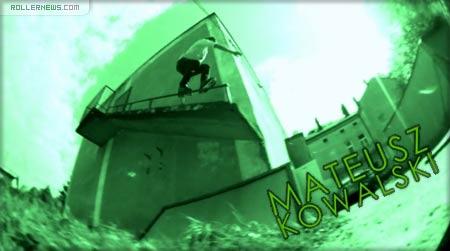 the hive Mateusz Kowalski