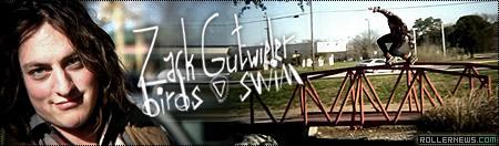 Zack Gutweiler: Birdswim Edit