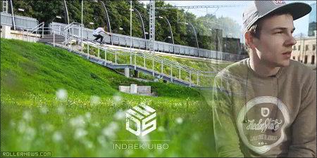 Indrek Uibo (Tallinn, Estonia): Documentary (2013)