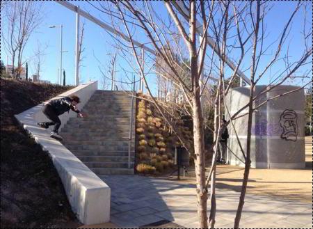 Chris Farmer - Backside (Barcelona): Photo