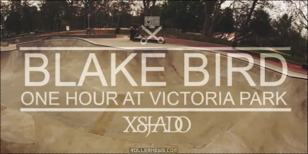 One Hour With Blake Bird at Victoria Park