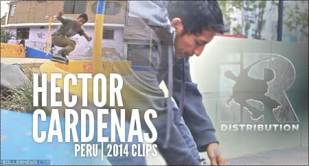 Hector Cardenas (Peru): 2014 Clips