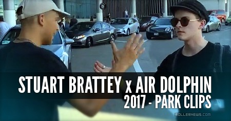 Stuart Brattey: Air Dolphin Clips (2017)