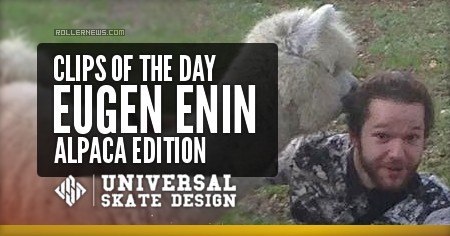 Clips of the day - Eugen Enin – Alpaca Edition (2017)