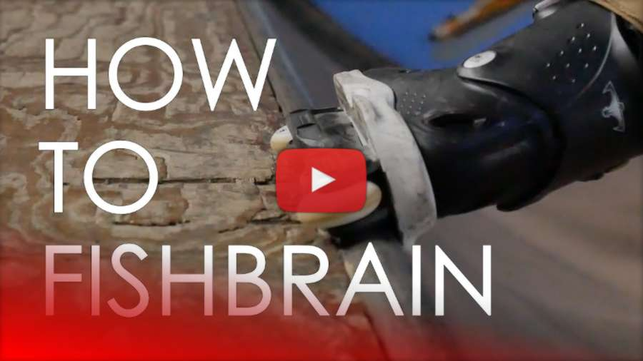 How To Fishbrain Grind, with Ricardo Lino