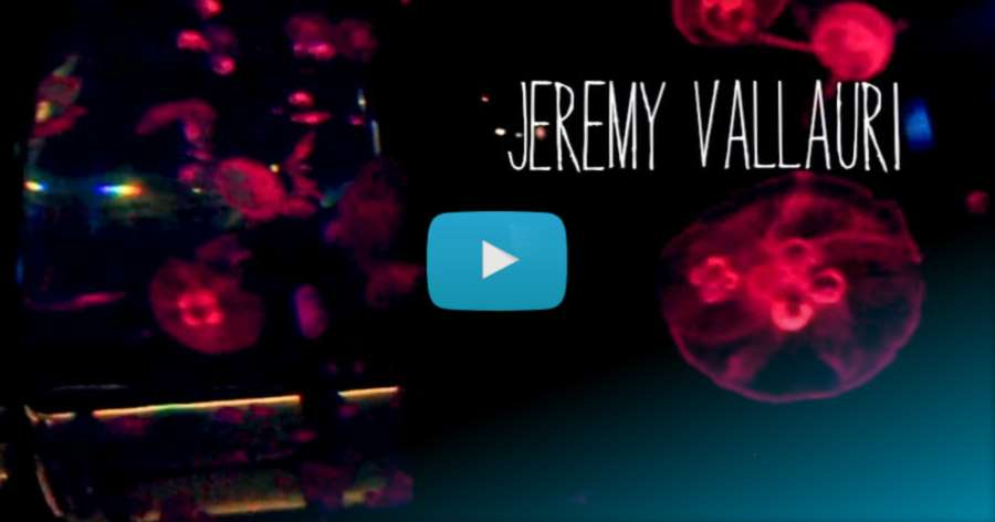 Jeremy Vallauri (France) - 2017 Edit