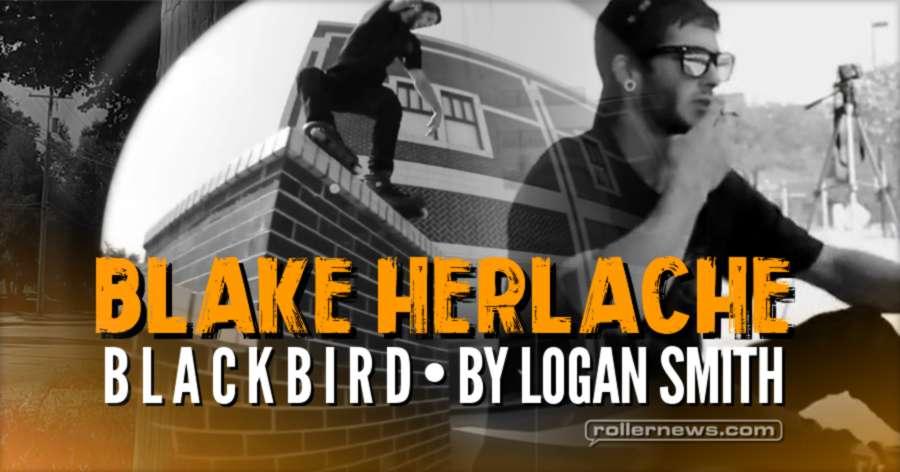 Blake Herlache - Blackbird (2017) by Logan Smith