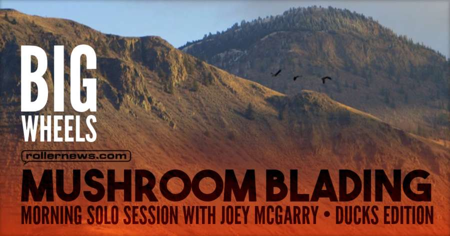 Mushroom Blading - Morning Solo Session with Joey McGarry - Atmospheric Ducks Edition